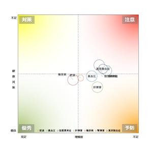 組織の健康バブルチャート